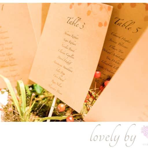 Weddingplaner_Bodensee_Schloss_Freudental_Allensbach_tischkarten